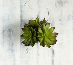 Pottery Barn Faux Green Thorned Succulent - Set of