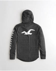 Hollister Hooded Graphic Tee, HEATHER BLACK