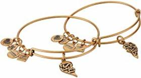 Alex and Ani Charity By Design, Best Friends Set o
