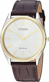 Citizen Watches AR3074-03A Eco-Drive