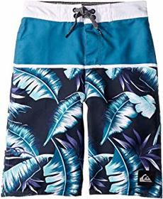 Quiksilver Kids Everyday Noosa 14 Boardshorts (Tod