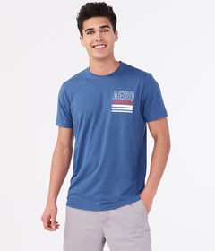 Aeropostale Aero NYC Stretch Graphic Tee