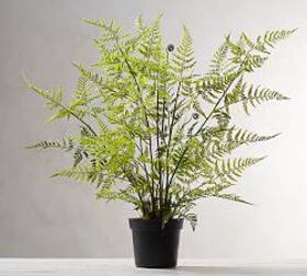 Pottery Barn Faux Potted Tree Fern
