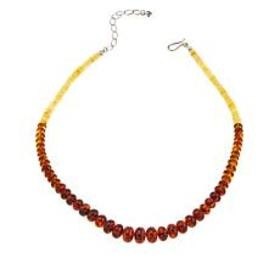 """Jay King Multicolored Ombré Amber Bead 18"""" Sterlin"""