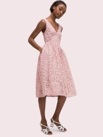 flora lace fit and flare dress