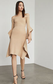 BCBG Teigan Asymmetrical Skirt