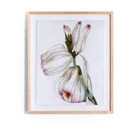 Pottery Barn Expanded Blossoms Framed Prints