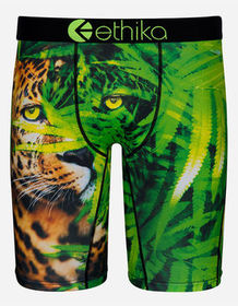 ETHIKA Cat Nip Staple Boys Boxer Briefs_