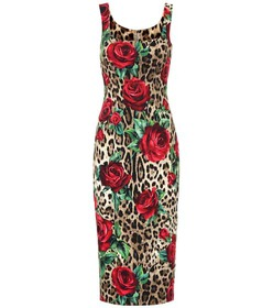 Dolce & Gabbana Leopard and floral-printed dress