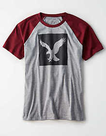 American Eagle AE Graphic T-Shirt