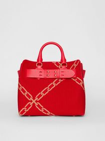 Burberry The Small Knitted Link Belt Bag in Bright