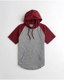 Hollister Colorblock Hooded T-Shirt, BURGUNDY AND