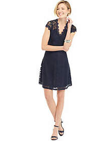 The Limited Short Sleeve Lace Fit and Flare Dress