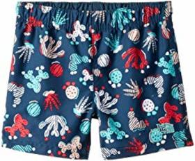 The North Face Kids Hike/Water Shorts (Toddler)