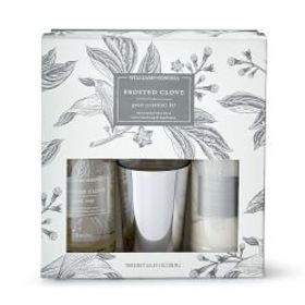 Williams Sonoma Frosted Clove Guest Set