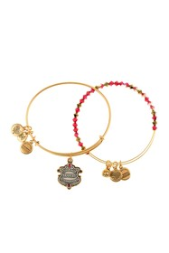 Alex and Ani Harry Potter Gryffindor House Crystal