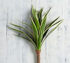 Pottery Barn Faux Agave Stem
