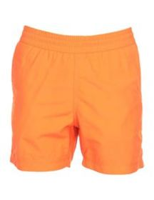 CARHARTT - Swim shorts