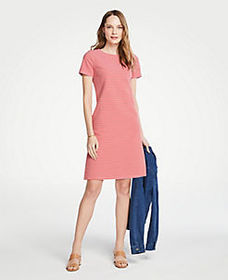 Petite Stripe Knit Short Sleeve Shift Dress