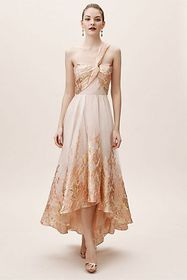 Anthropologie Inverness Dress