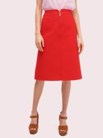 collection twill skirt