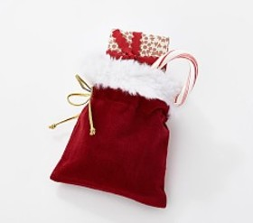 Pottery Barn Santa Bag Treat Container