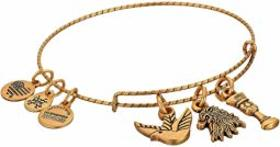 Alex and Ani Game of Thrones, Lannister Charm Bang