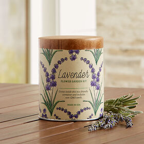Crate Barrel Waxed Planter Grow Kit-Lavender