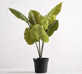 Pottery Barn Faux Potted Philodendron Houseplant