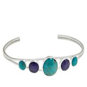 Jay King Sterling Silver Turquoise and Tanzanite C