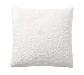 Pottery Barn Velvet Medallion Quilted Shams - Clas