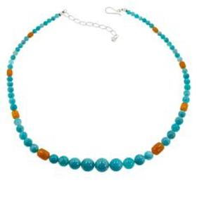 Jay King Amazonite and Butterscotch Bead Necklace
