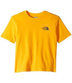 The North Face Kids Short Sleeve Graphic Tee (Litt