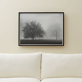 Crate Barrel Solitude Print