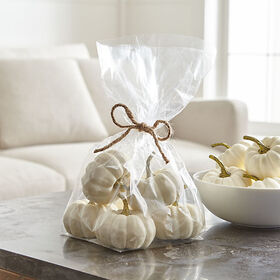 Crate Barrel White Pumpkin Filler