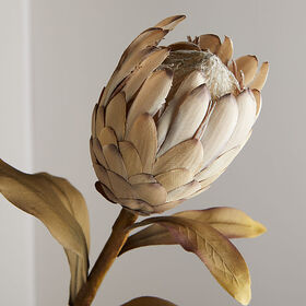 Crate Barrel NewFaux Protea Spray