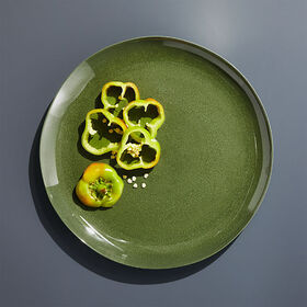 Crate Barrel Nico Green Melamine Dinner Plate