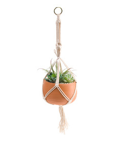 SILKCRAFT OF OREGON Faux Succulents In Hanging Ter