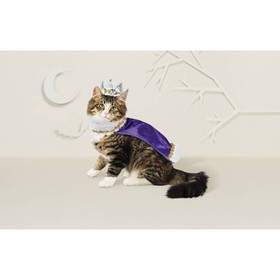Cat Costume - King/Queen - Hyde & EEK! Boutiqu
