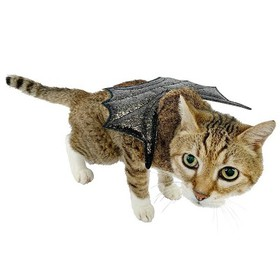 Glitter Wings Cat Costumes - Black - Hyde & EE