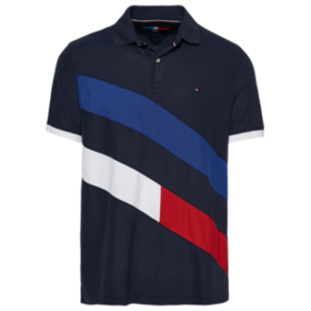 Tommy Hilfiger Foxen Polo