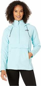 The North Face Tekno Ridge Hoodie