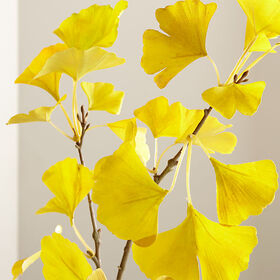 Crate Barrel Yellow Ginkgo Stem