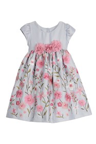 Laura Ashley Charmeuse Embroidered Dress (Toddler