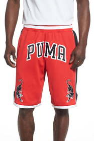 PUMA Stryk Mesh Athletic Shorts