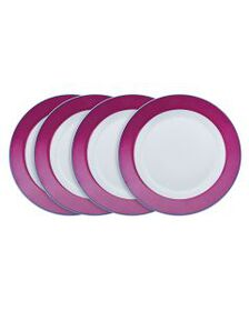 Pfaltzgraff Set of 4 Banded Pink with Blue Dinner
