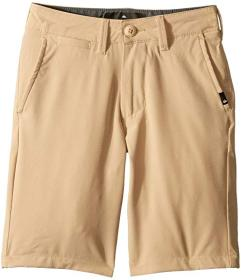 Quiksilver Kids Union Amphibian Shorts 19 (Big Kid