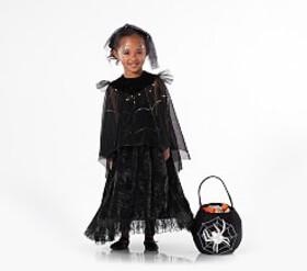 Pottery Barn Toddler Light Up Black Spider Queen C