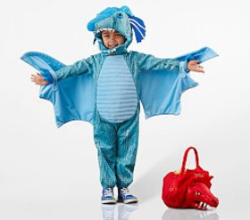 Pottery Barn Toddler Blue Dragon Costume