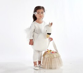 Pottery Barn Toddler 3D Swan Costume